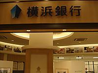 Yokohamaginko